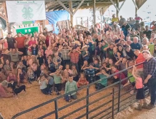 Madison County Fair 17 SillyFace